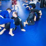 Academia Gorila Skierniewice - sporty walki, brazylijskie jiu-jitsu