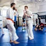 Academia Gorila Skierniewice - sporty walki, karate kyokushin
